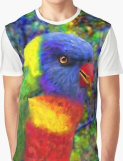 A Flying Rainbow Graphic T-Shirt