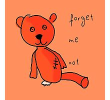 Never forget Teddy. Photographic Print