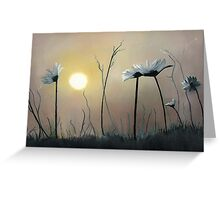 Daisies at Dusk Greeting Card