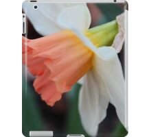 Ordinary Consequence iPad Case/Skin
