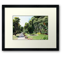 Subtropical gardens at Dunster Castle, Somerset Framed Print