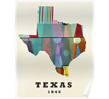 texas state map Poster