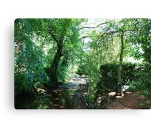 Stream in the woods, Dunster Castle Gardens Canvas Print