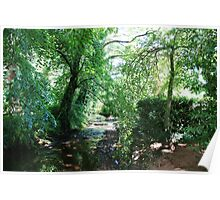 Stream in the woods, Dunster Castle Gardens Poster