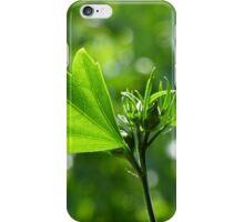 Greeny iPhone Case/Skin
