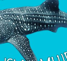 Swim with WHALE SHARKS on ISLA MUJERES Sticker