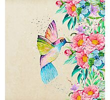 Whimsical watercolor hummingbird and  floral hand paint Photographic Print