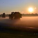 Kentucky Daybreak by John Carey