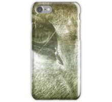 Portrait of a Horse iPhone Case/Skin