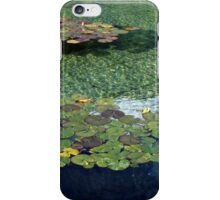 Blue Tranquillity iPhone Case/Skin