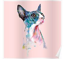 cat pink Poster
