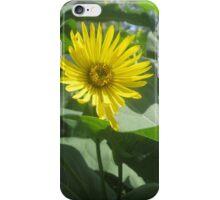 Yellow in Green iPhone Case/Skin