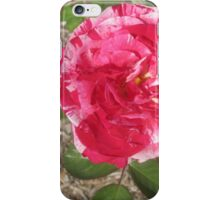 Pink and White Burst iPhone Case/Skin