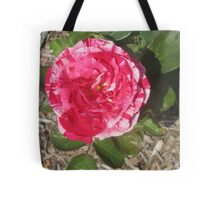Pink and White Burst Tote Bag