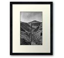 After The 2000 Cerro Grande Fire Los Alamos II Framed Print