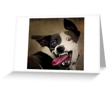 WARNING: OBAMA'S COMING FOR YOUR CHEW TOYS Greeting Card