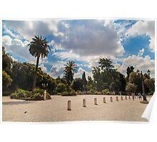 palms in the Pincio Garden in Rome Poster