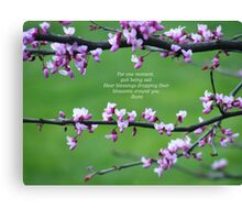 Blossoms Around You Canvas Print