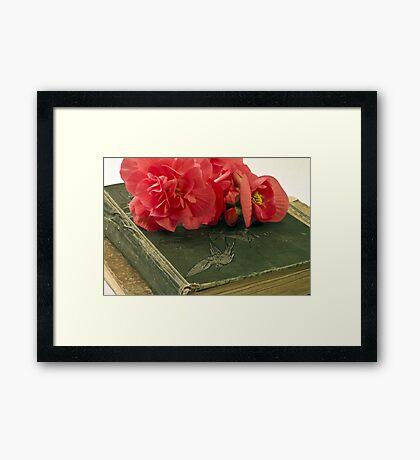 Begonias On Vintage Books Framed Print
