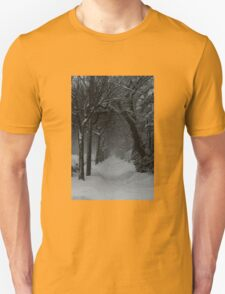 Winter Scene in Montreal T-Shirt