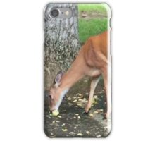 White Tail Deer If you like, please purchase, try a cell phone cover thanks iPhone Case/Skin