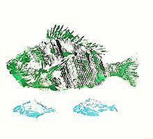 Gyotaku fish rubbing, Florida Sheephead & Pinfish by alan barbour