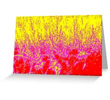 Coloured Grasses Greeting Card