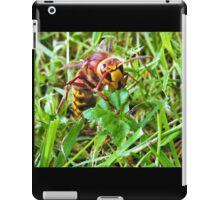 Hornet iPad Case/Skin