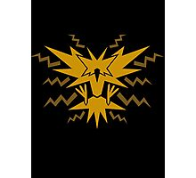 House Instinct logo Photographic Print