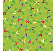 Background berry green Photographic Print