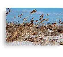 Tame a Wild Wind (horizontal) Canvas Print
