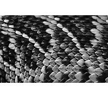 Scales B&W  Photographic Print