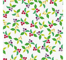 Background berry grey Photographic Print