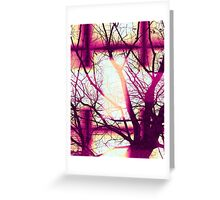 Harmonious Colors - Fuschia Sky Blue And Cream Greeting Card