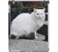 Hairy White Cat iPad Case/Skin