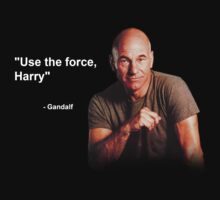 """Use the force, Harry"" - Gandalf by WayneNichols"