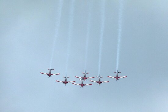 The Roulettes Aerobatic Team by Trish Meyer