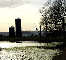 Silos In Silhouette by WildestArt