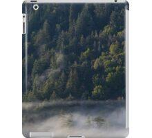 Big Sur forest Sunrise iPad Case/Skin