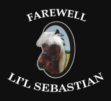 Farewell Li'l Sebastian by ChansFund