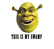 This is my swamp Photographic Print