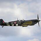 Vickers-Supermarine Spitfire IX by Wayne Gerard Trotman