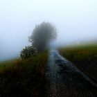 The Lonely Way... by Angelika  Vogel
