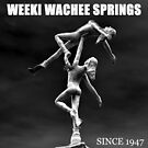 Weeki Wachee Springs Florida by David Lee Thompson