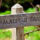 Appalachian Trail sign by David Lee Thompson