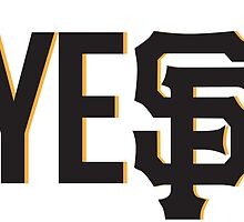 The Yes II by BayBasics