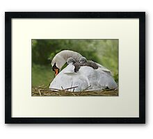 Feather love Framed Print