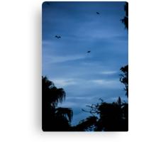 Bats taking flight Canvas Print