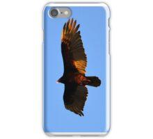 Turkey Vulture iPhone Case/Skin