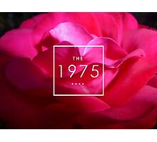 the pink 1975 Photographic Print